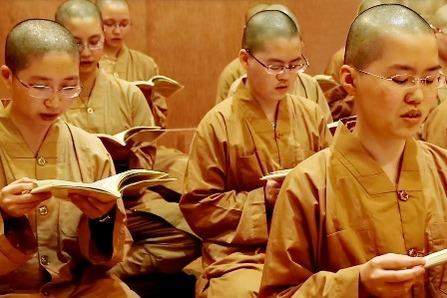 福智尼眾法師專注學習