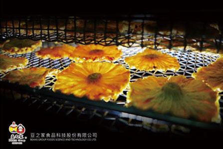一片片被烘乾的太陽花