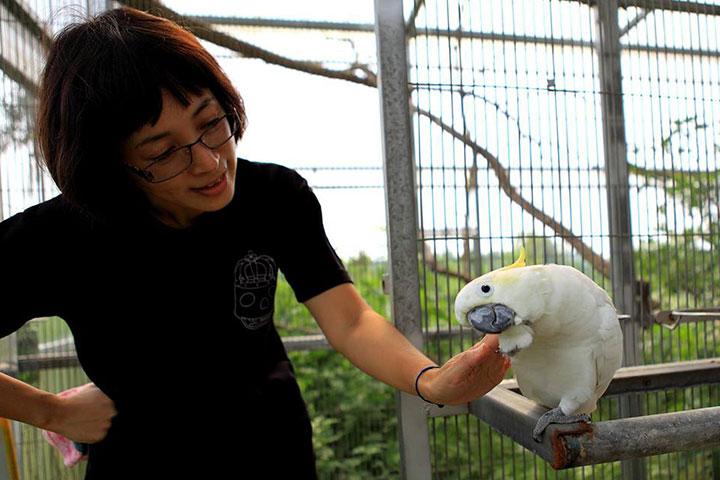 福智關廟護生教育示範園區的鸚鵡