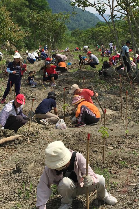 大家一同努力種樹保護大地