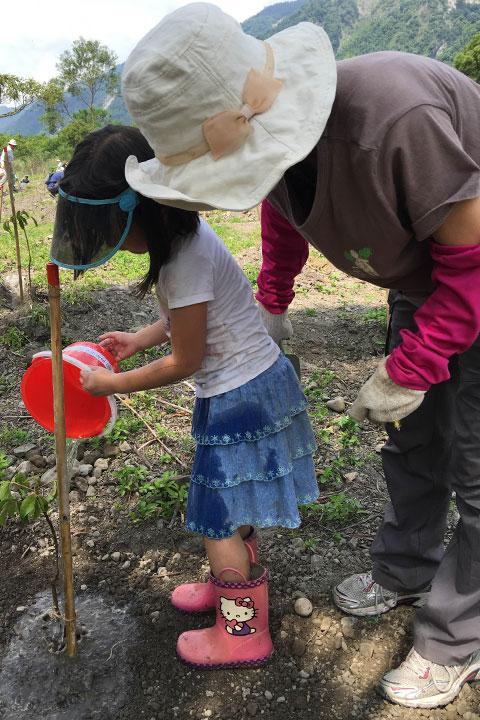 種下小樹、種下希望