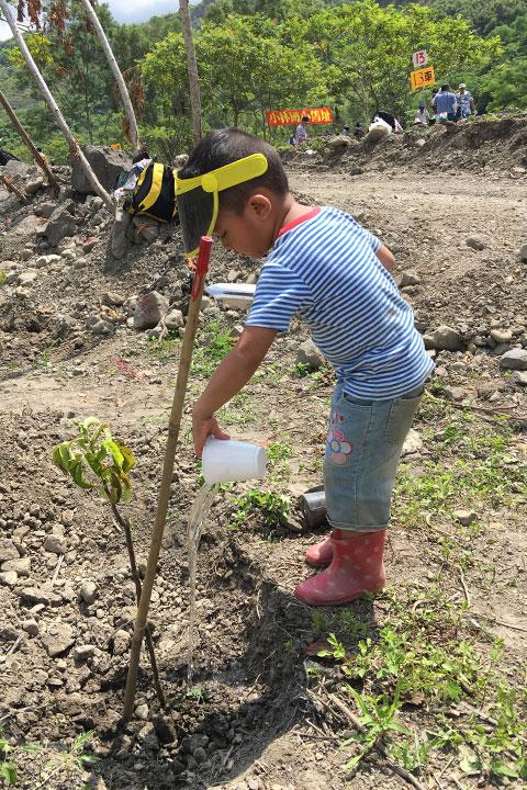 扶老攜幼一同來種樹