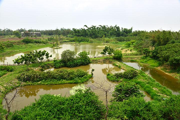 2017濕地生態體驗與食安教育,關廟護生園區推廣多元護生