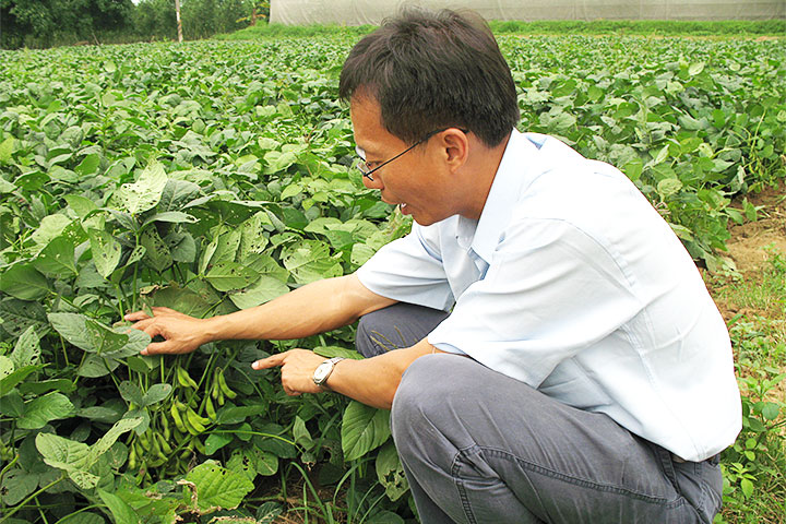 執行長指導農友有機毛豆栽種
