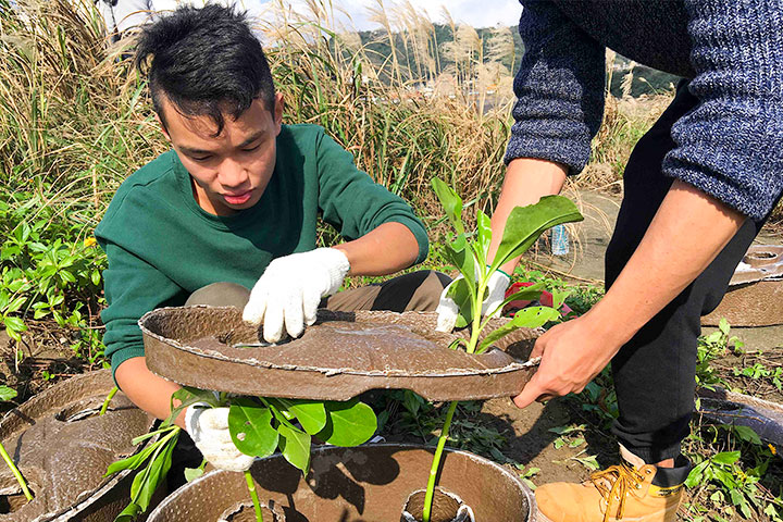 種樹護地球,慈心啟動「水寶盆」技術為海岸造林尋出路