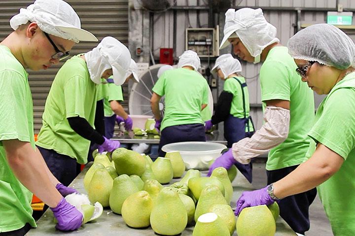 里仁請多家廠商協助,研發出口感溫潤、柚香飽滿的文旦柚酥