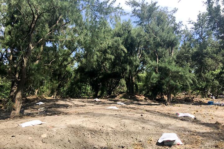 2017森林破空處整地