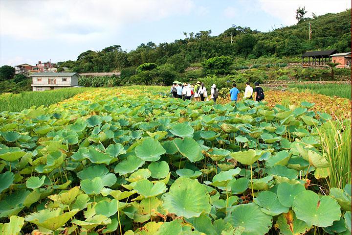 國際學者一致推崇,慈心基金會在台灣推動有機實踐「四生」理念,深具台灣農業生產特色,堪為國際間極具參考價值的里山精神代表性案例。