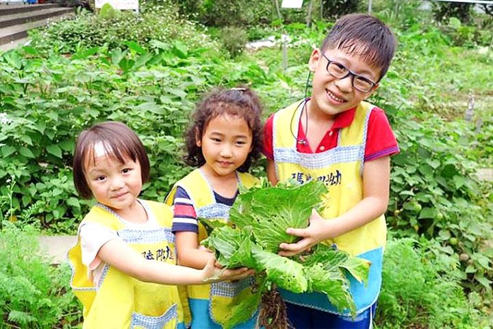 慈心基金會從校園食農教育著手,讓有機護生理念向下扎根