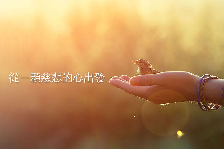 慈悅國際推動「潔淨標章」,評鑑基礎源自里仁經驗