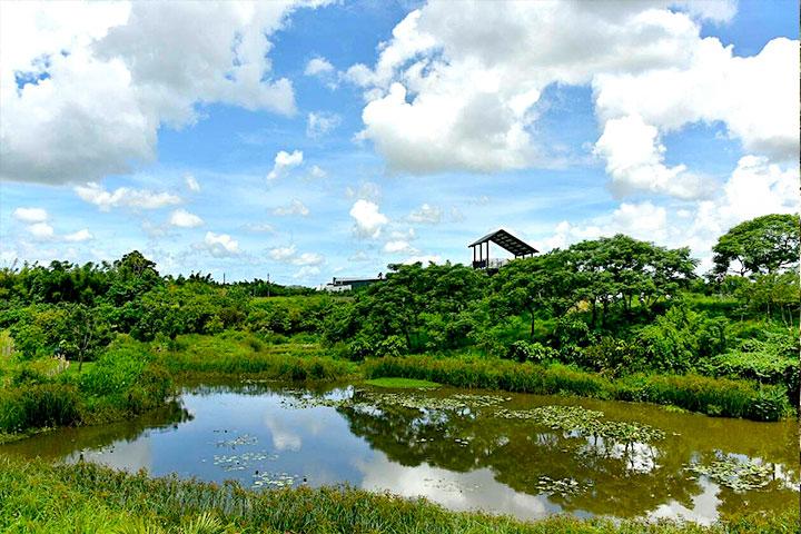 福智關廟護生教育示範園區特別打造野生動物的自然棲地,創造物種適地適性所依存的環境