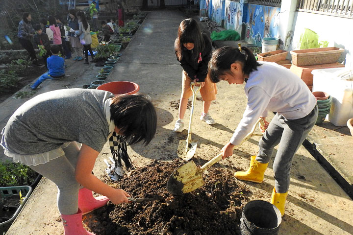 學生在校園菜圃親手翻土耕種