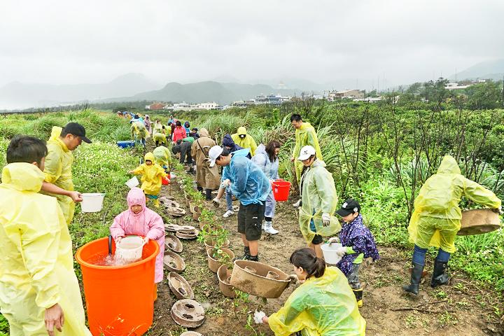 企業認養海岸種樹,號召員工親子一同響應,守護臺灣世代海岸線(新北)