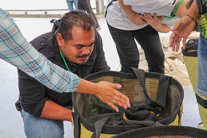 慈心淨源茶場喜迎嘉賓,22位國際農業專家蒞臨參訪
