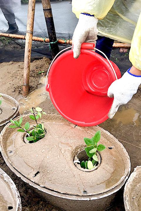 「水源寶植樹盆」解決海岸造林缺乏灌溉水源的問題