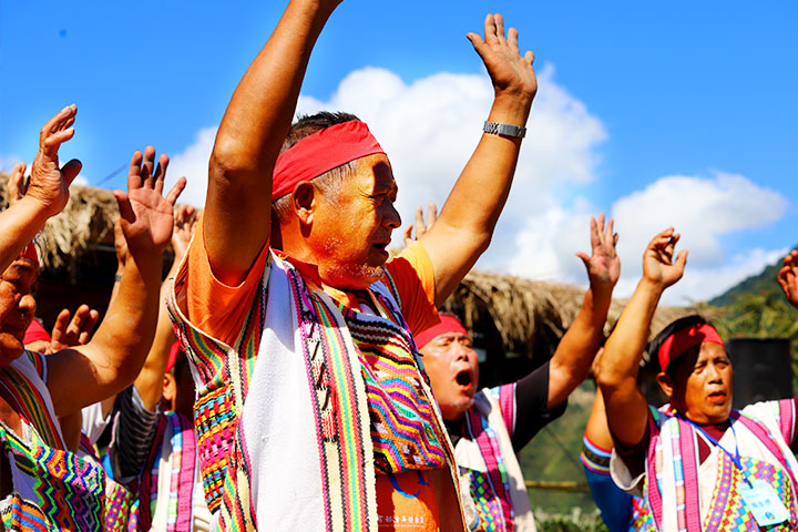 從瓦拉米到Malavi,慈心與林務局花蓮合力保種與在地文化