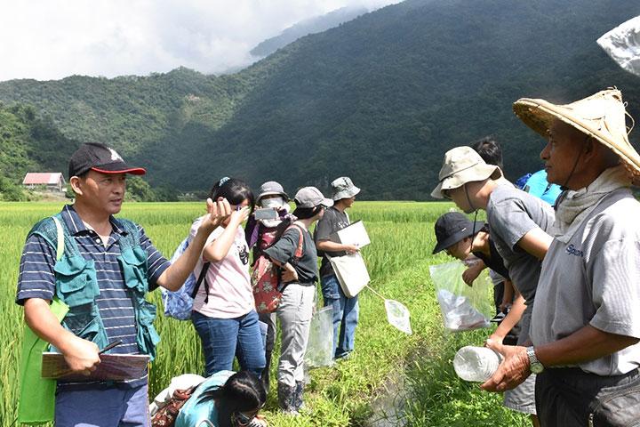 南安田區也是最好的生態觀察教室