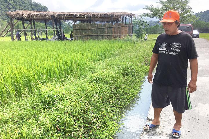 農友在開挖土溝,在田埂種植原生草種穗花木蘭,提供多種動物棲息