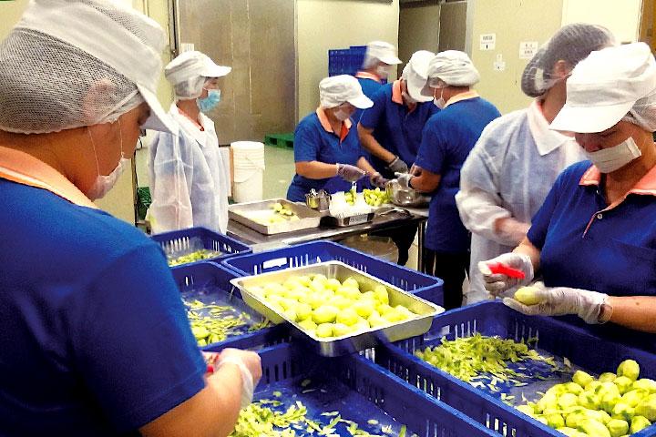 里仁「跨產業價值鏈的社會企業模式」支持友善耕作守護茂林紫斑蝶,邀請加工廠開發出土芒果青鮮果乾,傳遞企業利他共享價值