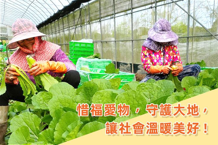 里仁集眾人之愛,協助有機農友去化凍菜及校園蔬菜