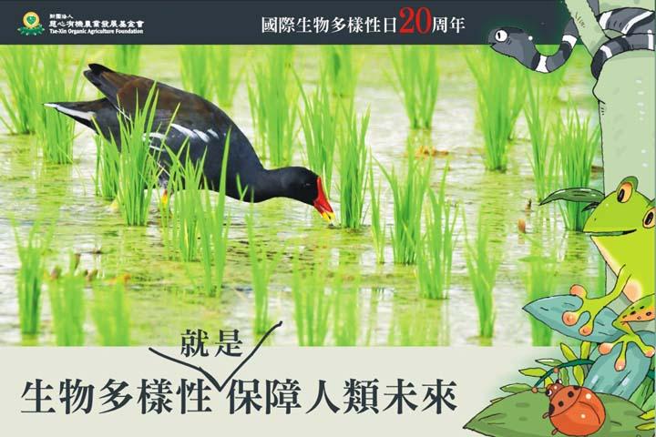 【國際生物多樣性日20周年】 綠色保育呼應「生物多樣性就是保障人類未來」