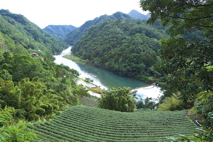2007年慈心基金會在翡翠水庫上游啟動「淨源計畫」,推動水源區的茶園轉作有機,間接保護大台北數百萬人的民生飲用水源
