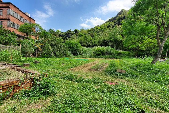生態園--高年級、義工的菜園