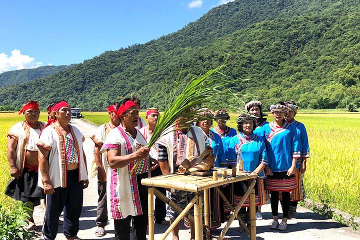 慈心基金會輔導花蓮的南安部落轉作有機,希望經濟、文化與環保並存