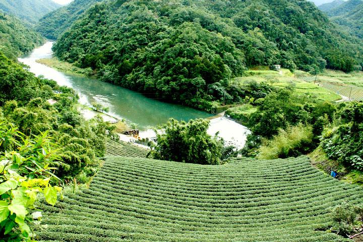 淨源計畫保護翡翠水庫上游環境,間接守護數百萬人的民生用水。
