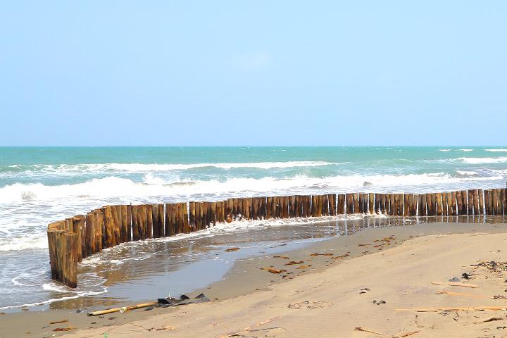 慈心基金會在網仔寮汕沙洲的第一道防線,用木樁來削減海浪力量,也有堆沙作用,避免海風吹過沙洲會掩蓋地面上的植栽及建築