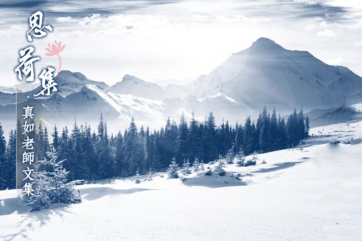 【思荷集】真如老師:隆冬之雪