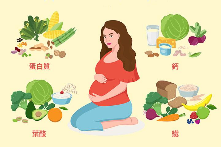 孕媽媽在懷孕期間採用均衡的蔬食飲食,同樣能孕育出健康的小寶寶