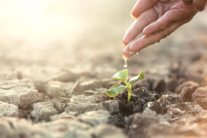 〈慈心理念、素食行動〉如俊法師導讀摘要 3. 吃素解決世界災難,功德勝於供養諸佛