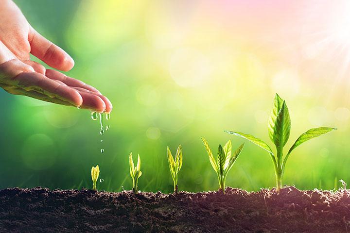〈慈心理念、素食行動〉如俊法師導讀摘要 4. 和佛菩薩一起為眾生負責,走出希望之路